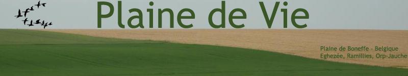 Plaine de Vie - Plaine de Boneffe - Collectif citoyen pour la sauvegarde de la Plaine de Boneffe